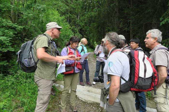 Botanic excursion (Gottéron, FR)