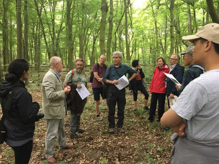 Prof. A. Boratynski showing natural forest fragment in Wielkopolska National Park