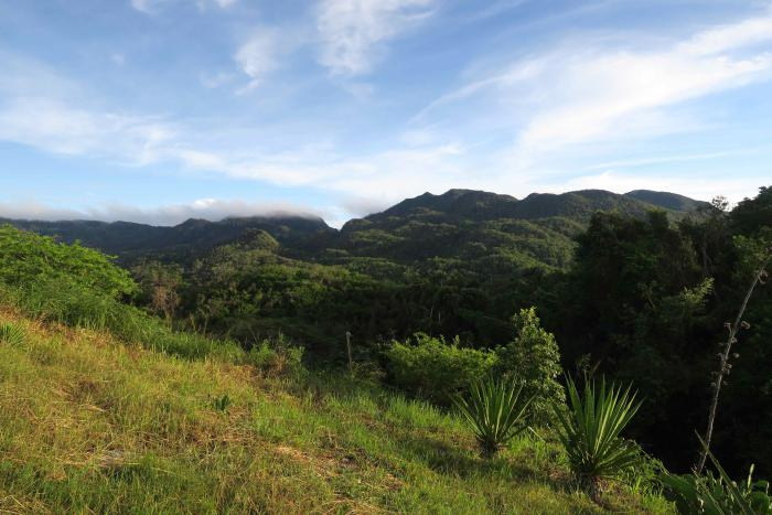 Topes de Collantes Nature Reserve Park. Sancti Spíritus, Cuba.
