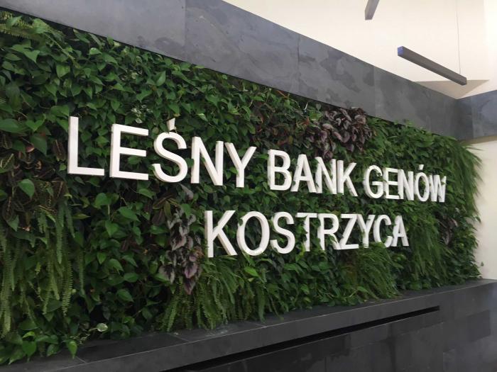 Kostrzyca Forest Gene Bank