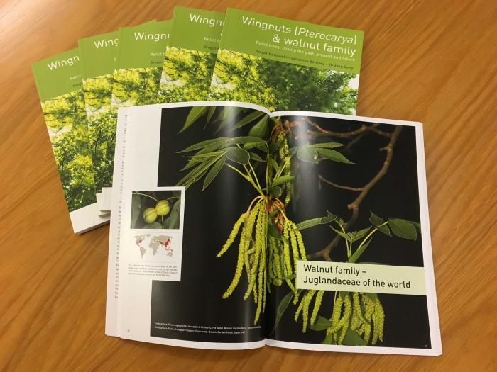 New book of the Pterocarya network